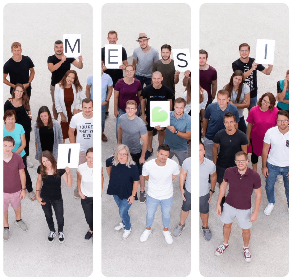 group photo of MESI employees